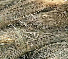 稻草粉碎机多少钱一台