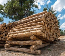 木材粉碎机多少钱一台