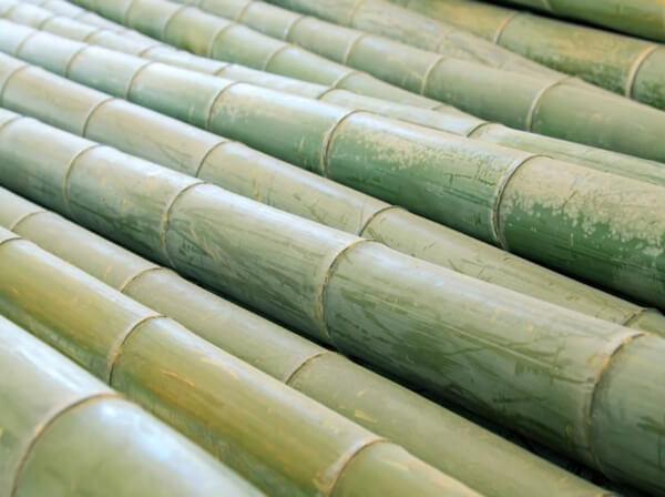竹子粉碎机多少钱一台